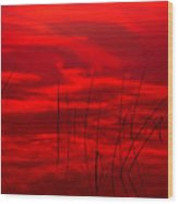 Lake Reeds And Red Sunset Wood Print