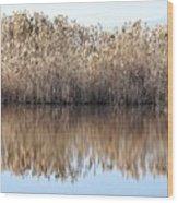 Lake Reflexion Wood Print