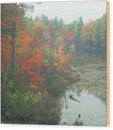 Lake Rohunta Foliage Wood Print