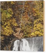 Lake Solitude Falls Wood Print