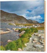Lake Summit Tundra Path Wood Print