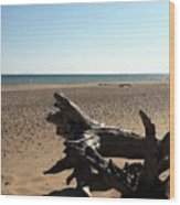 Lake Superior Driftwood Wood Print