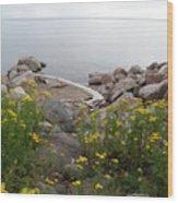 Lake Superior Shore Wood Print