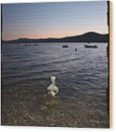 Lake Tahoe Sunset With Rocks And Black Framing Wood Print