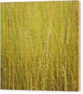 Lake Tahoe Wild Grasses Wood Print