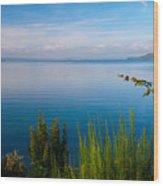 Lake Taupo Wood Print