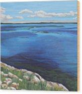 Lake Toho Wood Print