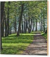 Lake Trail Wood Print