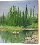 Lake View 1-2 Wood Print