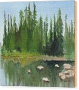 Lake View 1 Wood Print