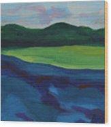 Lake Visit Wood Print