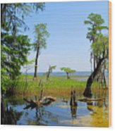 Lake Waccamaw Nc Wood Print