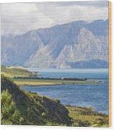 Lake Wakatipi Wood Print