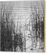 Lake Wake Wood Print