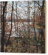 Lake Wallenpaupack Through The Trees Wood Print