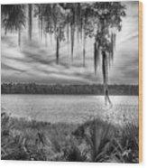 Lake Wauberg   Wood Print