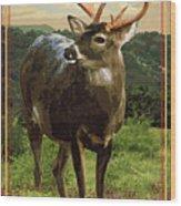 Lake Whitney State Park Wood Print