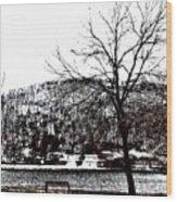 lake Wynona Wood Print