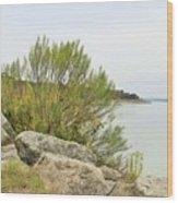 Lake033 Wood Print