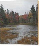 Lakeshore Wood Print