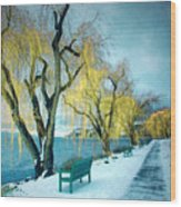 Lakeshore Walkway In Winter Wood Print