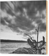 Lakeshore Winter Clouds Wood Print