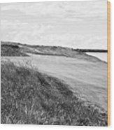 Lakeside Beauty - Bw No. 17 Wood Print