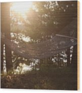 Lakeside Hammock Wood Print