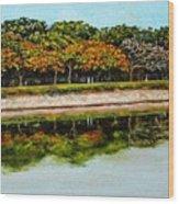 Lakeside Joggers Path Wood Print