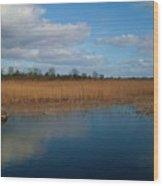 Lakeside Of Lough Derg Wood Print