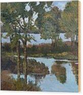 Lakeside Symphony Wood Print