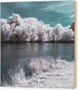 Lakeside4 Wood Print