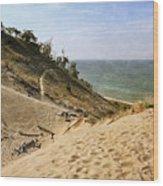 Laketown Dune Panorama Wood Print