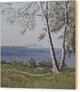 Lakeview Landing Wood Print