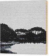Lal Bagh Lake 3 Wood Print