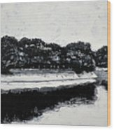 Lal Bagh Lake 4 Wood Print