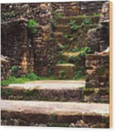 Lamanai Temple Wood Print