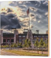 Lambeau Field Awakes Wood Print by Joel Witmeyer