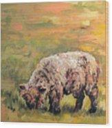 Lambkin Wood Print