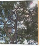 Lamp And Tree Wood Print