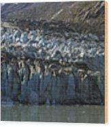 Lamplugh Glacier Wood Print