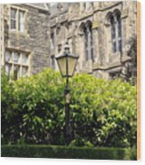 Lamppost In Front Of Green Bushes And Old Walls. Wood Print