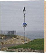 Lamppost Near The Sea. Wood Print