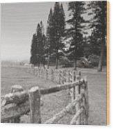 Lanai Fence Wood Print