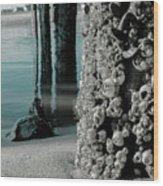 Land Meets Water Nature Photograph Wood Print