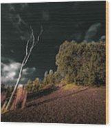 Land Of Devastation Wood Print
