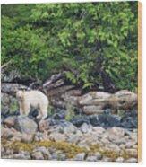 Land Of The Spirit Bear Wood Print