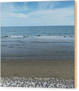 Land Sea And Ocean Background Wood Print