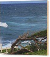 Land Wind And Sea Wood Print