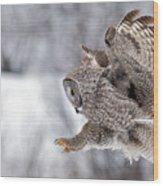 Landing Great Grey Owl Wood Print